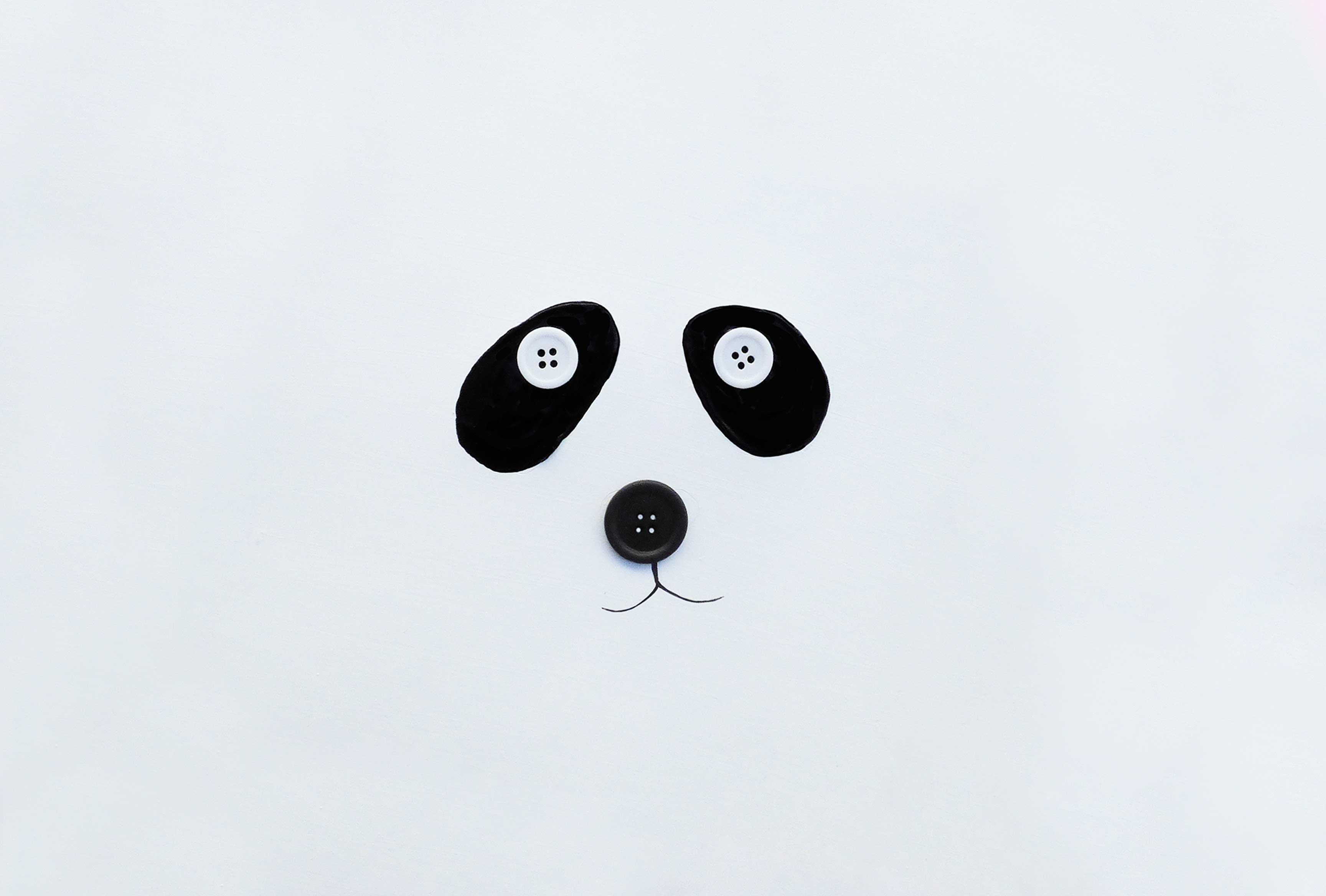 pandaslidebueno